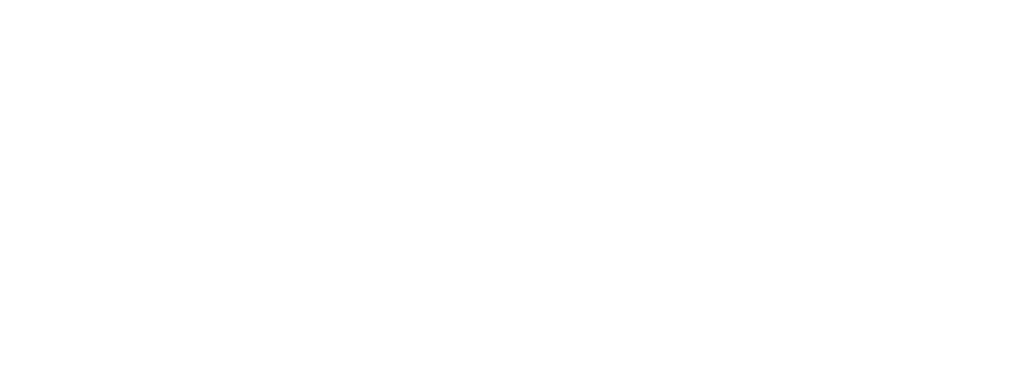 netcolors logo white